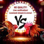Đăng ký S128 – Chơi đá gà Online ăn tiền thật 100%