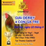 TRỰC TIẾP THOMO – Giải 4 con gà tre ngày 22/4/2019