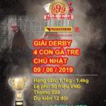 """[LIVE Casino 999] Giải đá gà thomo """" 4 con gà tre"""" , chủ nhật ngày 9/6/2019"""