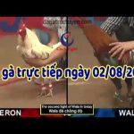 [TRỰC TIẾP + VIDEO] Đá gà Thomo Campuchia thứ 6 ngày 2/8/2019