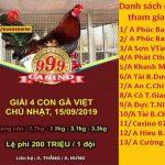 [TRỰC TIẾP] Giải đá gà cựa sắt Campuchia Thomo ngày 15/9/2019