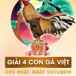 Trực tiếp Giải đá gà Thomo mới nhất ngày chủ nhật 17/11/2019
