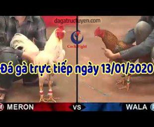 dagatructuyen 1-2020 (13)