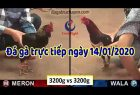 dagatructuyen 1-2020 (14)