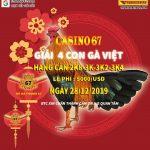 Xem Trực tiếp giải đá gà nòi Campuchia ngày thứ 7 – 28/12/2019