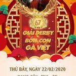 Xem giải đá gà Việt Thomo Campuchia ngày hôm nay 22/2/2020