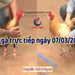 Đá gà Thomo trực tiếp mới nhất hôm nay, thứ bảy ngày 7/3/2020