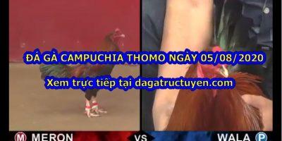 Đá gà Thomo Live