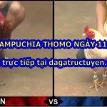 Video Đá gà hay Thomo ngày 11/10/2020