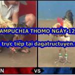 Trực tiếp đá gà CAM Thomo ngày 12/10/2020