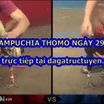Đá gà Thomo Campuchia ngày 29/10/2020