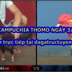 Link xem đá gà Thomo Live ngày 3/10/2020