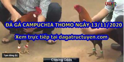 Coi Đá gà Thomo Hay