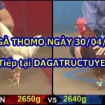 Đá gà Campuchia Bồ 67 – Live 30/4/2021