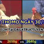 Full video đá gà cựa sắt tại Campuchia ngày 30/5