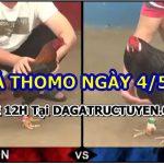 Đá gà Campuchia Thomo Hôm Nay ngày 4/5/2021