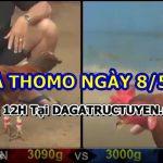 Tuyển tập video gà cựa sắt Bồ 999 – 8/5/2021