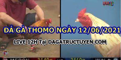 daga-T6-12