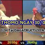 Trực tiếp gà đá Hôm Nay Bồ 67 ngày 30/6/2021