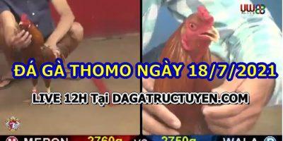 daga-T7-18