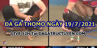 daga-T7-19