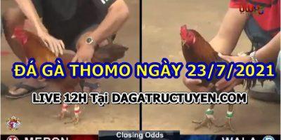 daga-T7-23