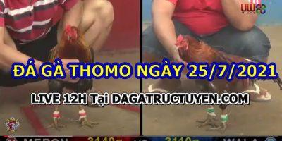 daga-T7-25