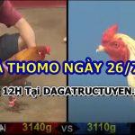 Trực tiếp đá gà Casino Hôm Nay 26/7/2021
