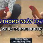 Tuyển tập video đá gà Kinh Điển ngày 27/7/2021