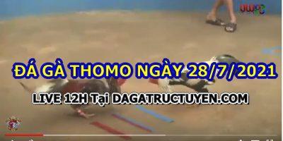 daga-T7-28
