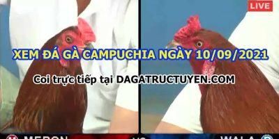 daga-t9-10